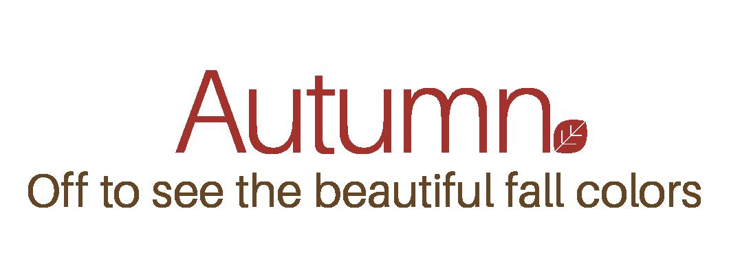 Fun little facts about koyo | Autumn – Foliage Special